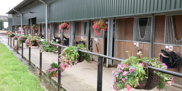 BHSI, Stable Managers and Stage 4 Stable Management lessons