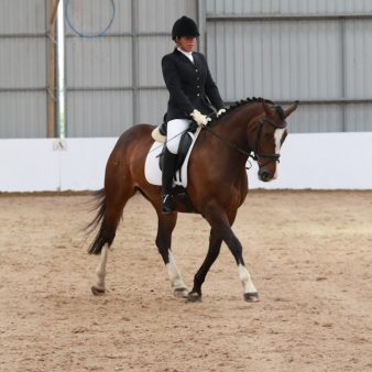 1-beth-quob-dressage-15-07-15-15-jul15